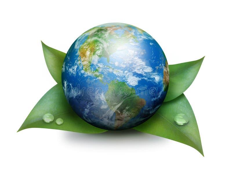 Groene Aarde op Bladeren die op Wit worden geïsoleerd