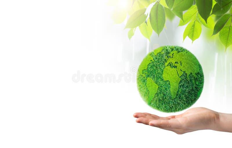 Groene aarde ter beschikking op witte achtergrond royalty-vrije stock foto
