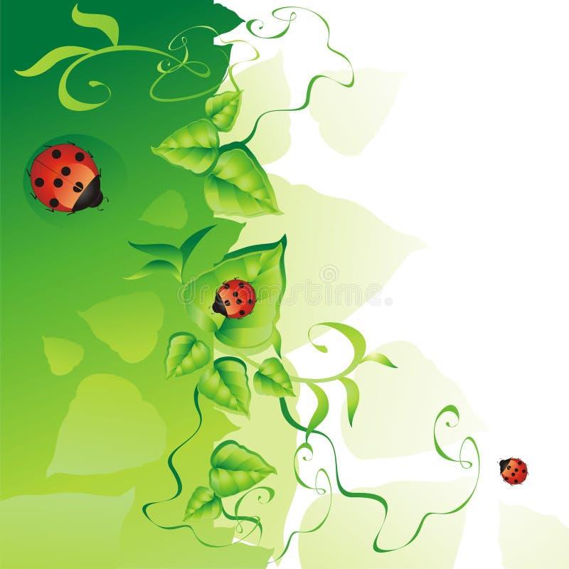 Groene achtergrond. royalty-vrije illustratie