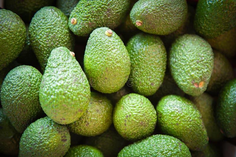 Groene achtergrond van avocadohoop stock fotografie