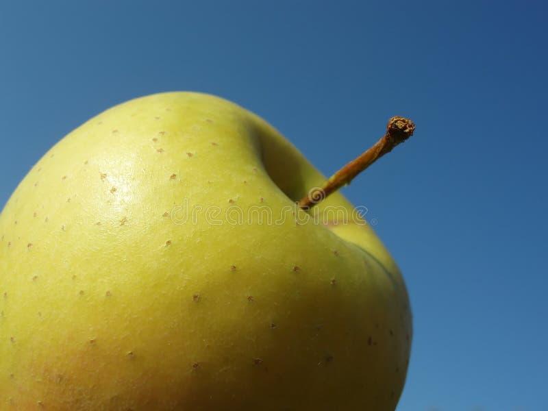 Download Groene appel stock foto. Afbeelding bestaande uit detail - 284614