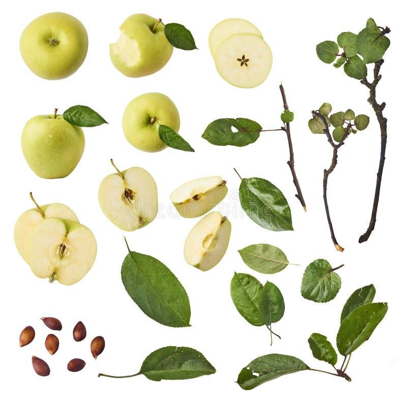 Groene appel gehele stukken en bladeren geplaatst die op witte backgr worden geïsoleerd stock afbeelding
