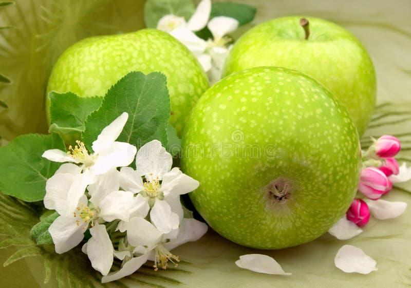 Groene appelen met bloemen royalty-vrije stock foto's