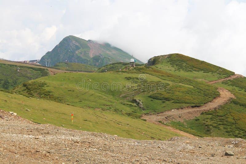 Groene bergen stock foto
