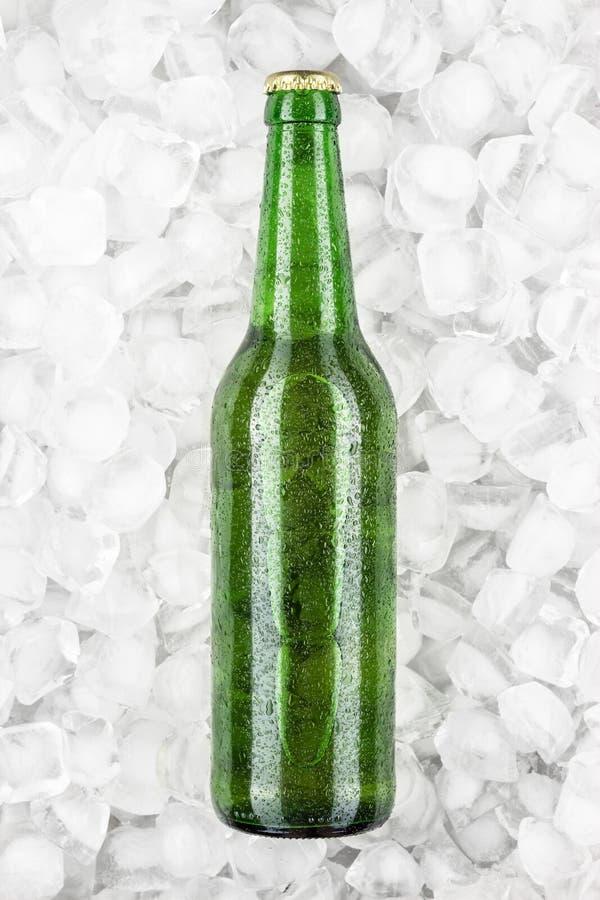 Groene bierfles in het ijs stock foto's