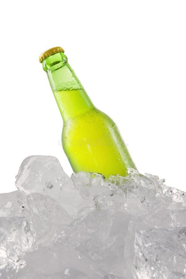 Groene bierfles in het koude ijsblokje stock fotografie