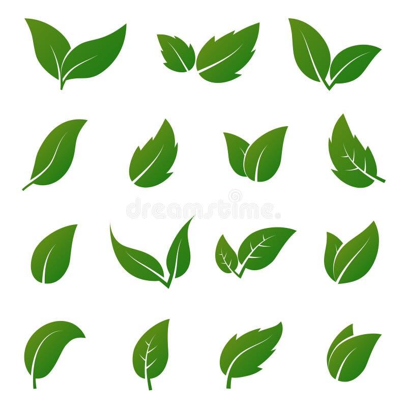 Groene blad vectorpictogrammen De ecologiesymbolen van de lentebladeren vector illustratie