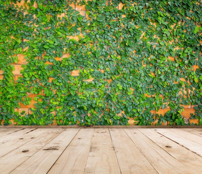 Groene bladachtergrond en houten vloer royalty-vrije stock afbeeldingen