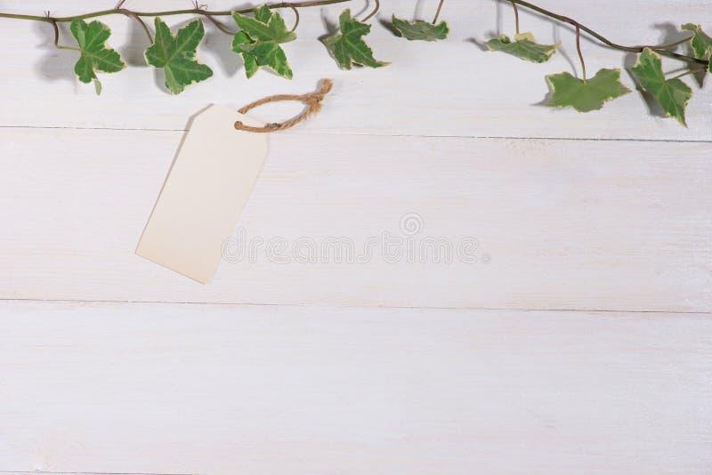 Groene bladeren met lege markering op houten achtergrond royalty-vrije stock fotografie