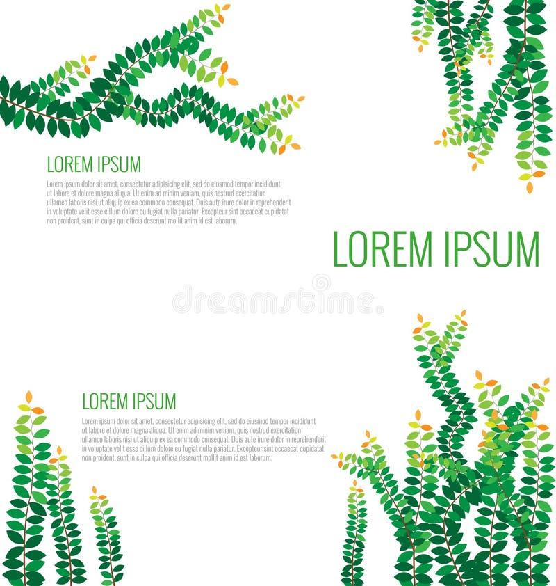 Groene bladeren op de muur vector illustratie