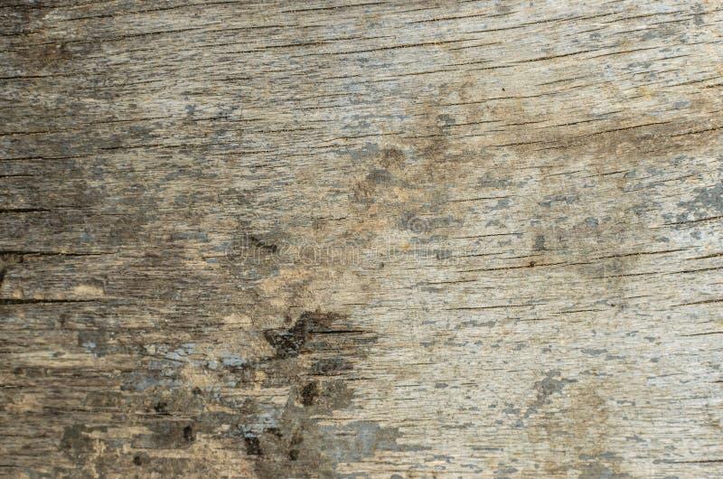 Groene bladeren op houten achtergrond royalty-vrije stock afbeeldingen