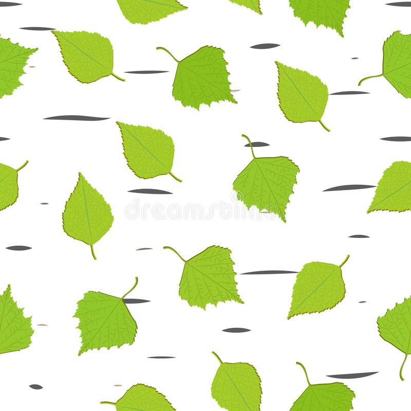 Groene bladeren van berkdaling stock illustratie