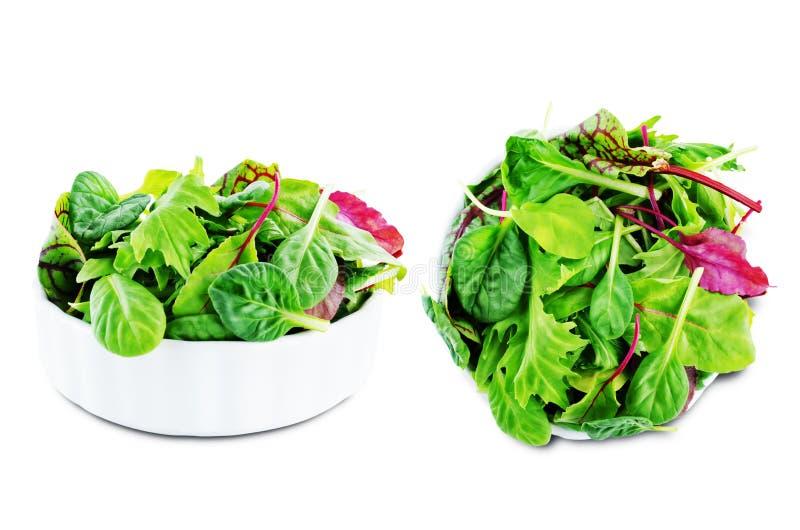 Groene bladeren voor sla, spinazie, snijbiet, arugula, bietengreens op een wit ge?soleerde achtergrond stock foto