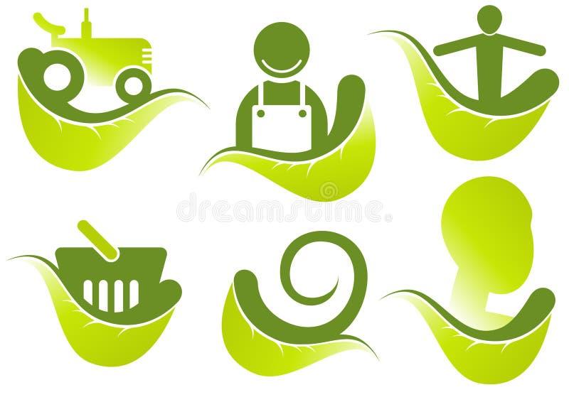 Groene bladinzameling
