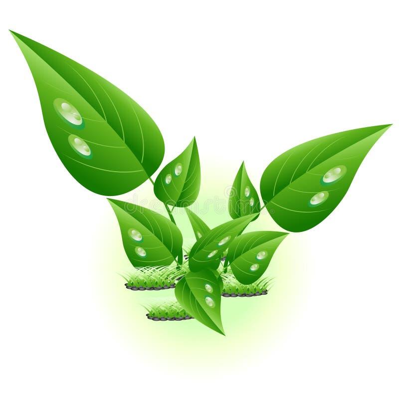 Groene bloem royalty-vrije illustratie