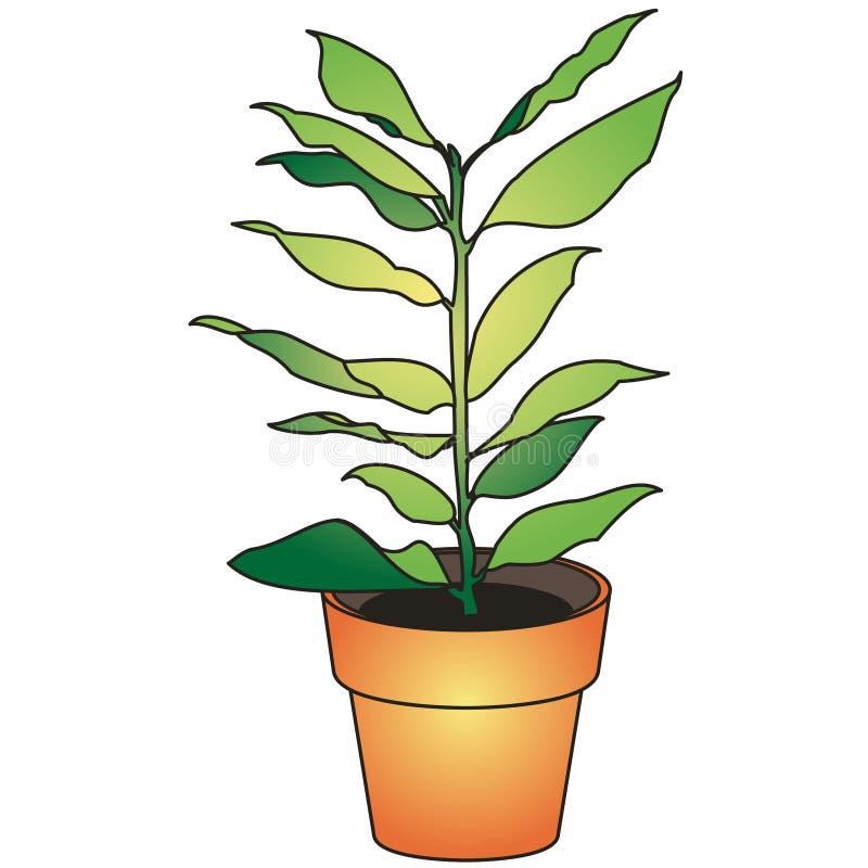 Groene bloem vector illustratie
