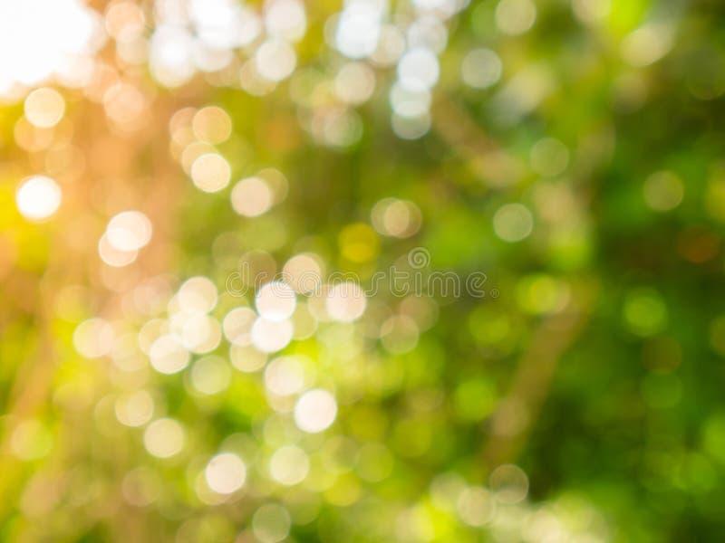 Groene bokeh op van het aard abstracte onduidelijke beeld groene bokeh als achtergrond van boom royalty-vrije stock afbeelding