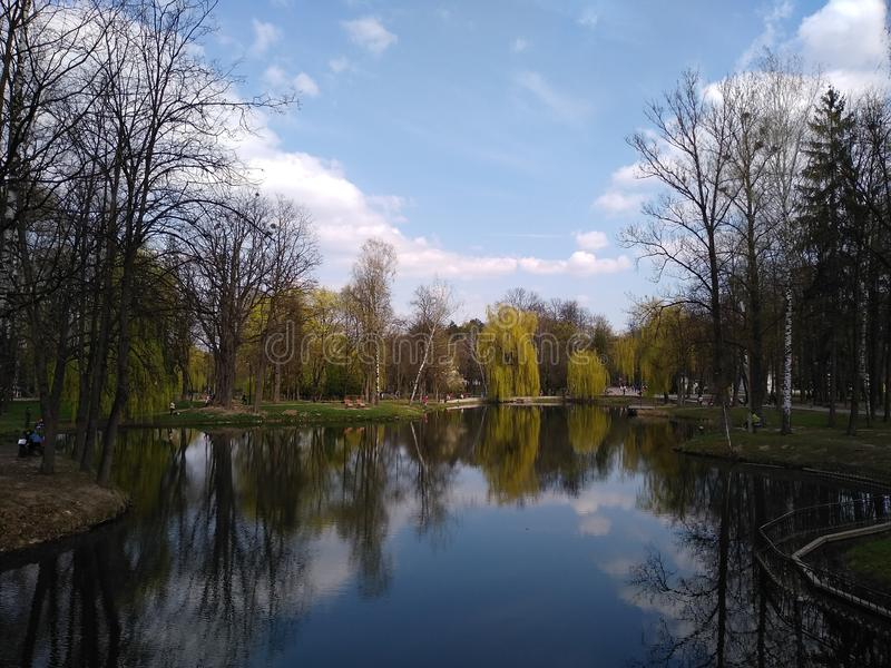 Groene bomen en blauwe hemel in stadspark Ivano-Frankivsk, de Oekra?ne De vroege Lente royalty-vrije stock afbeeldingen