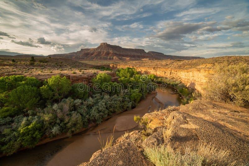 Groene bomen en struikenlijn de banken van de Maagdelijke Rivier op de bodem van een canion die naar Orkaan Mesa windt royalty-vrije stock afbeeldingen