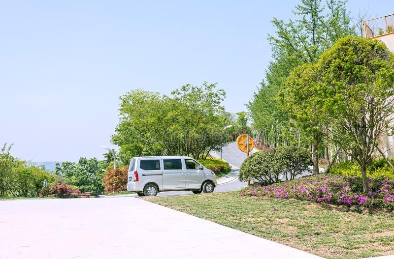 Groene boom en de bestelwagen royalty-vrije stock afbeeldingen