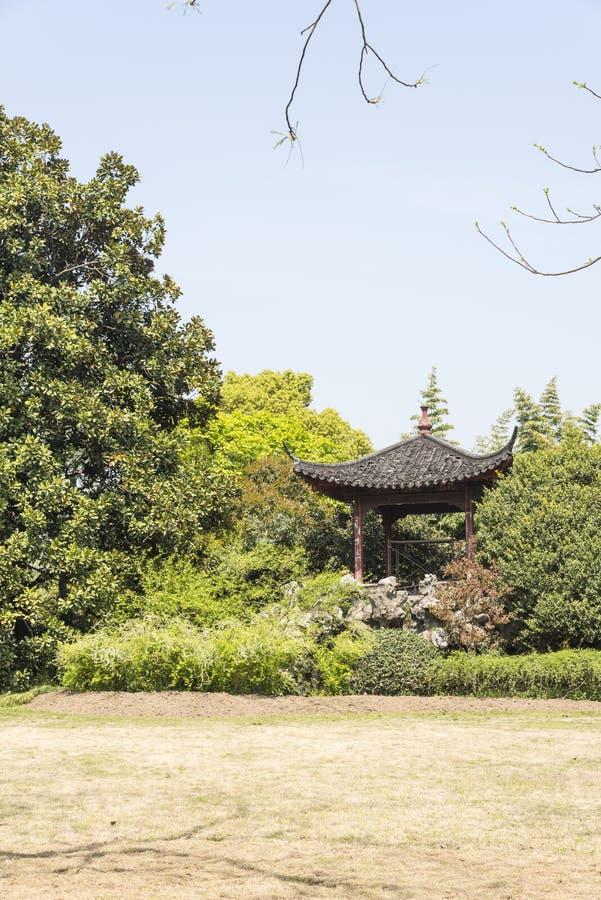 Groene boom en pavilione stock foto