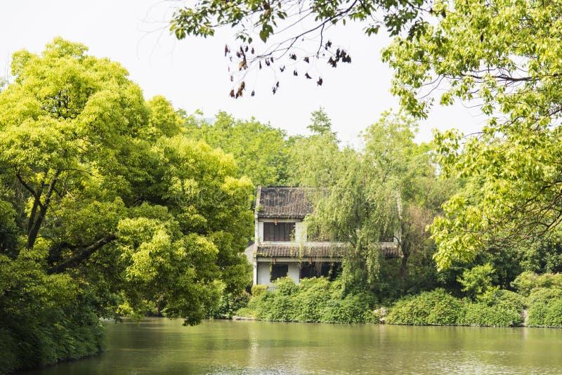 groene boom en Qinghai-rivier stock afbeeldingen