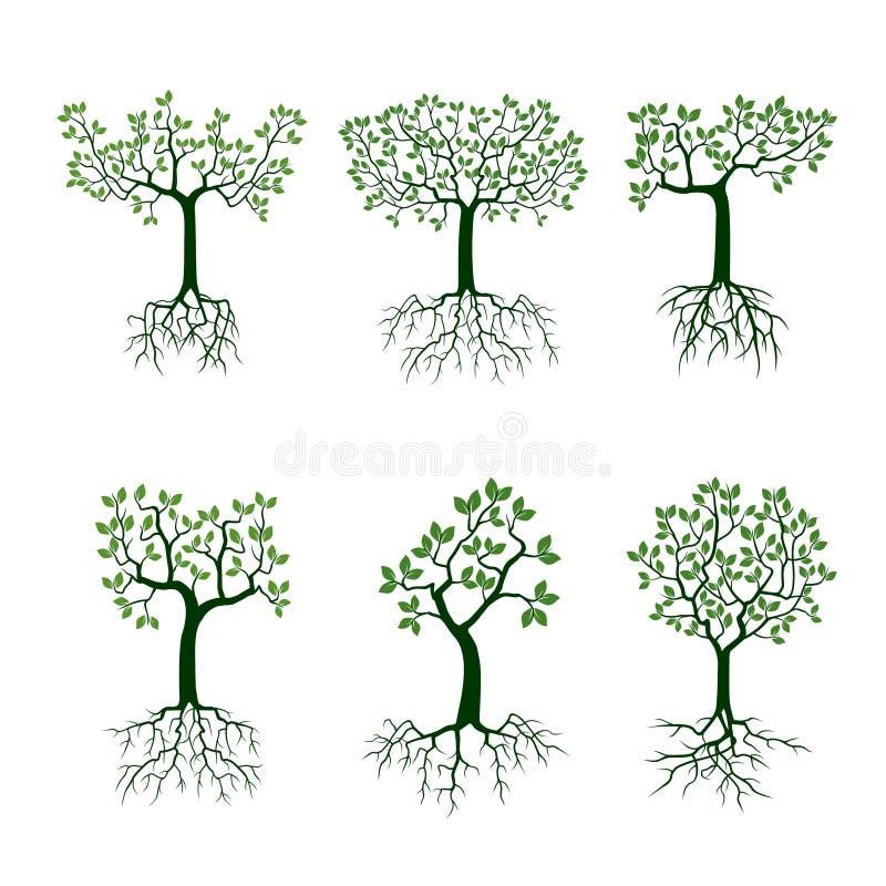 Groene boom met wortels royalty-vrije illustratie