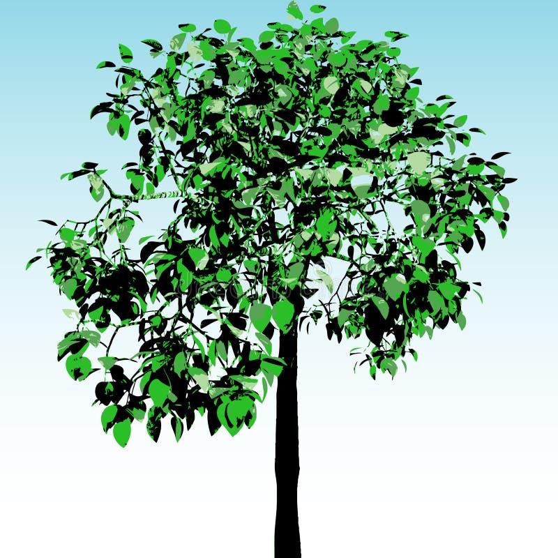 Groene boom. Vector. vector illustratie