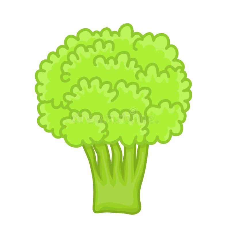 Groene broccoli geïsoleerde illustratie stock illustratie