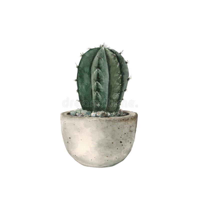 Groene cactus in een concrete pot, waterverf stock illustratie