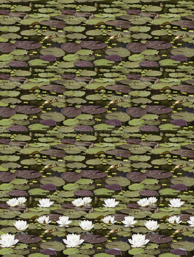 Groene camuflagetextuur met editable ontwerpwaterlelie royalty-vrije illustratie