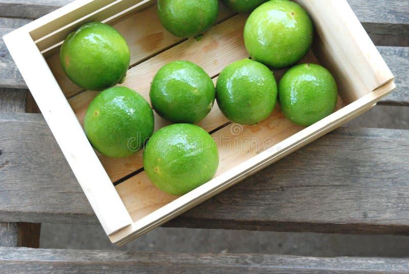 Groene citroenen royalty-vrije stock afbeelding