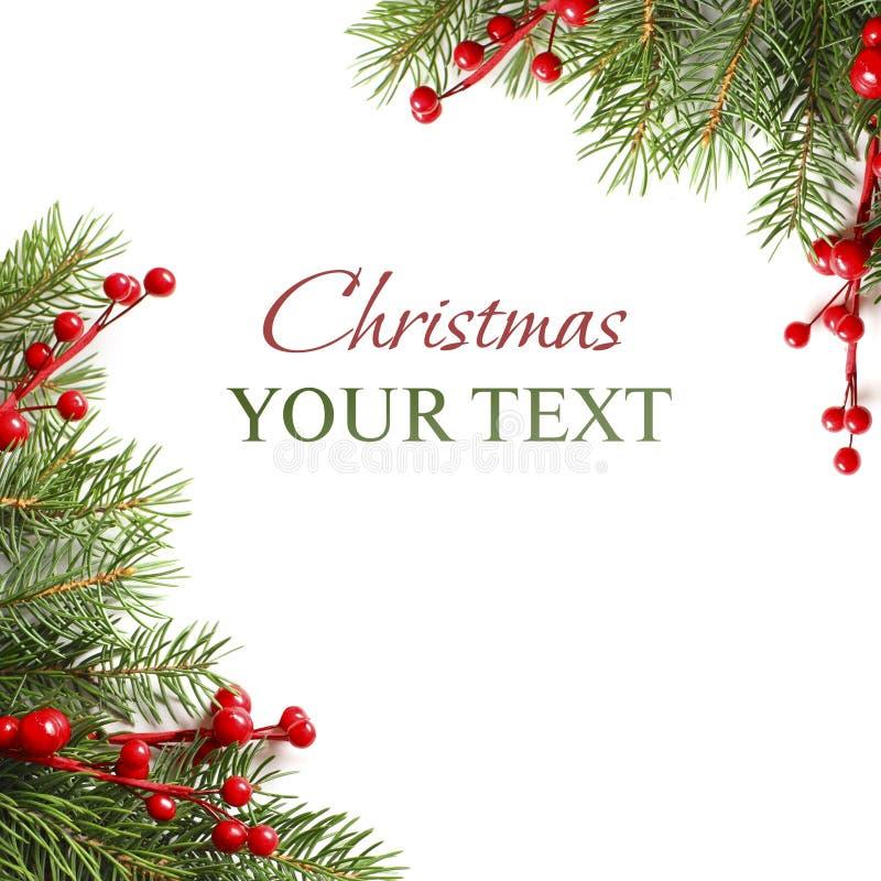 Groene de boomtak van Kerstmis op wit royalty-vrije stock afbeeldingen