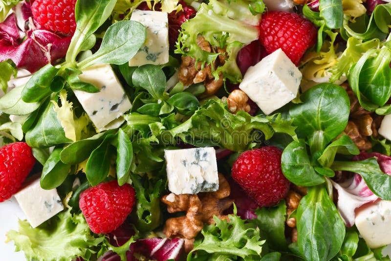 Groene de lentesalade met schimmelkaas, framboos en noten royalty-vrije stock afbeelding