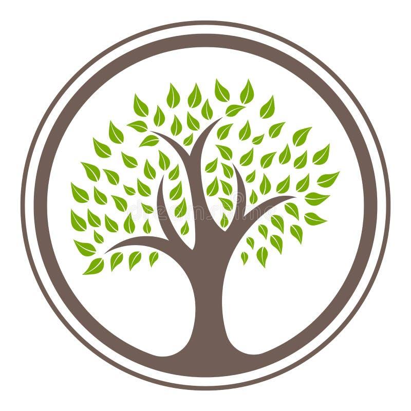 Groene de ontwerpsjabloon vectorillustratie eps 10 van het boomembleem royalty-vrije stock afbeeldingen