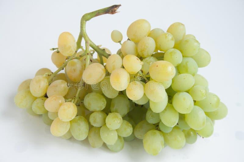 Groene die druivenbos op witte achtergrond wordt geïsoleerd royalty-vrije stock afbeelding