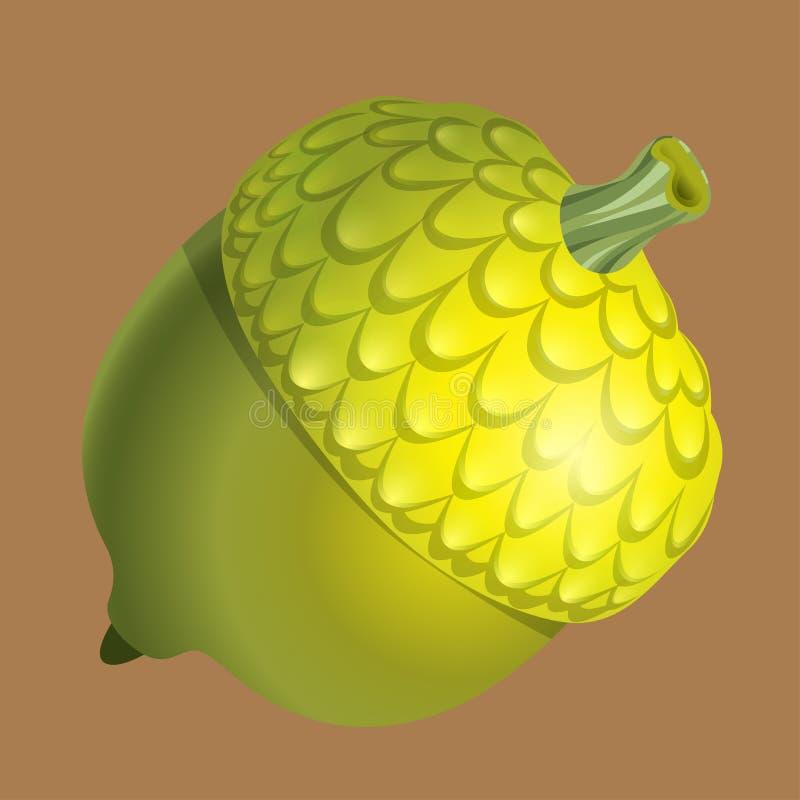 Groene die eikel op een bruine achtergrond wordt geïsoleerd Noot en voedsel vectorgrafiek royalty-vrije illustratie
