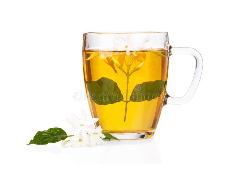 Groene thee met jasmijnbloemen over wit stock afbeelding