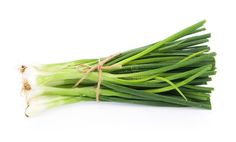 Groene die ui op de witte achtergrond wordt ge?soleerd stock foto