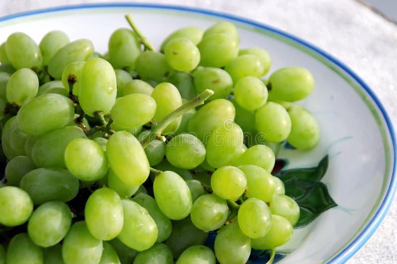 Groene Druiven royalty-vrije stock fotografie