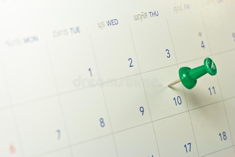 Groene Duimkopspijker stock afbeelding