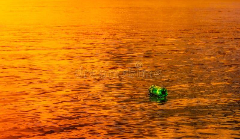 Groene eenzaamheid bij zonsondergang stock foto's