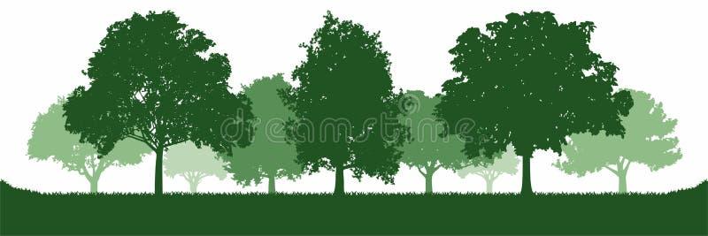 Groene Eiken Boom Forest Environment stock illustratie