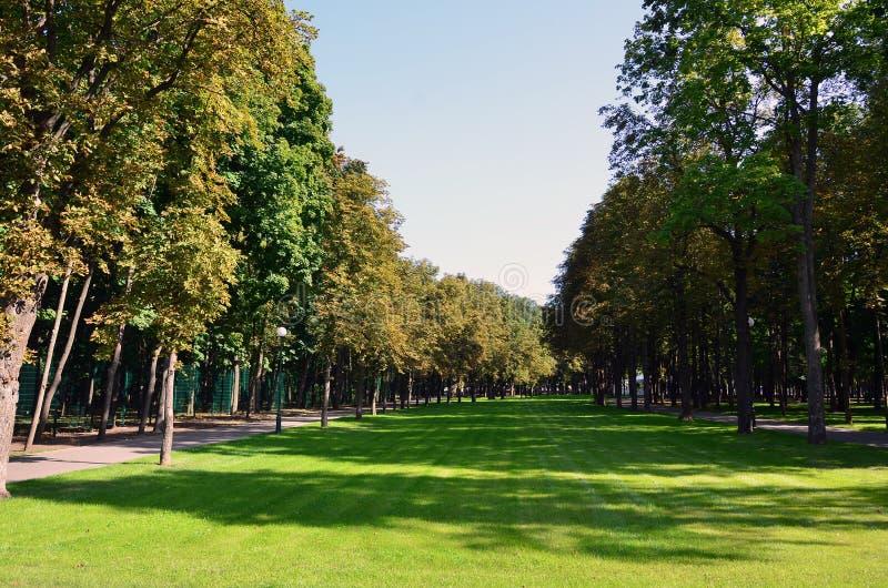 Groene en oranje bomen in mooi park De bloemen en natuurlijke herfst landscap royalty-vrije stock fotografie