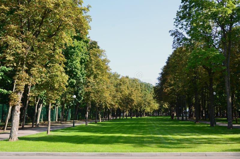 Groene en oranje bomen in mooi park De bloemen en natuurlijke herfst landscap royalty-vrije stock afbeeldingen