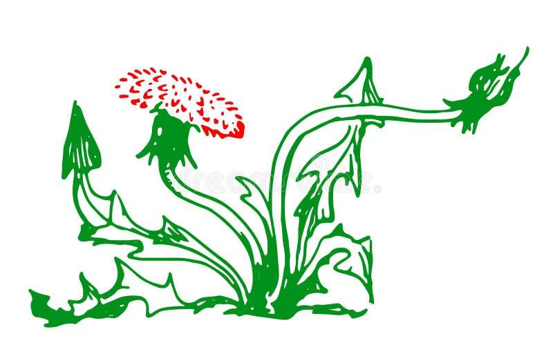 Groene en rode die paardebloem in potlood wordt getrokken royalty-vrije illustratie