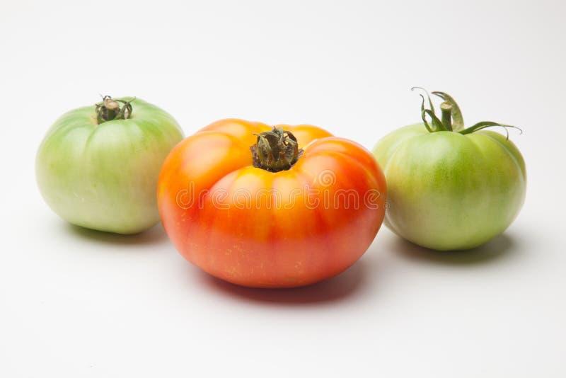 Groene en rode tomaten, het rijpen procédé royalty-vrije stock foto