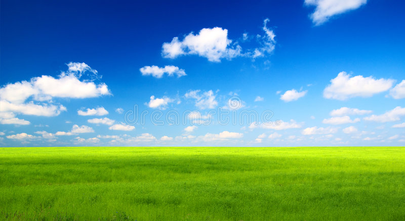 Groene gebied en hemel stock afbeeldingen
