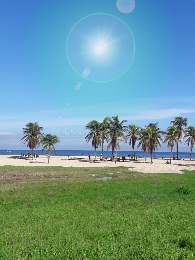 Groene gebieden in een zonnige dagkust in Belize dicht bij Cuba stock foto