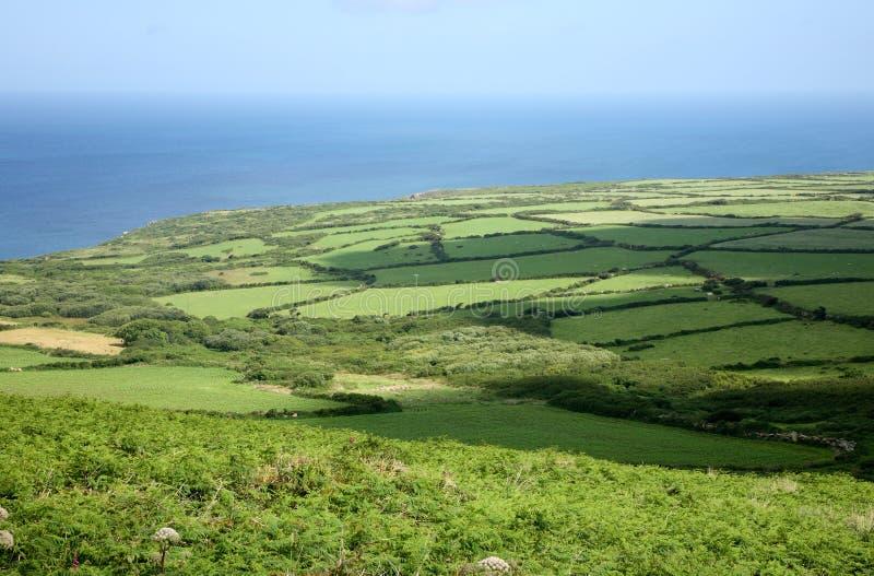 Groene gebieden en schaduwen. stock foto